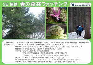 18-19The Spring Forest Walk2