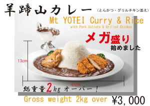 Yotei-Curry